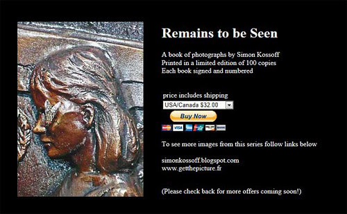 Remains to be Seen Book Pay-Pal link