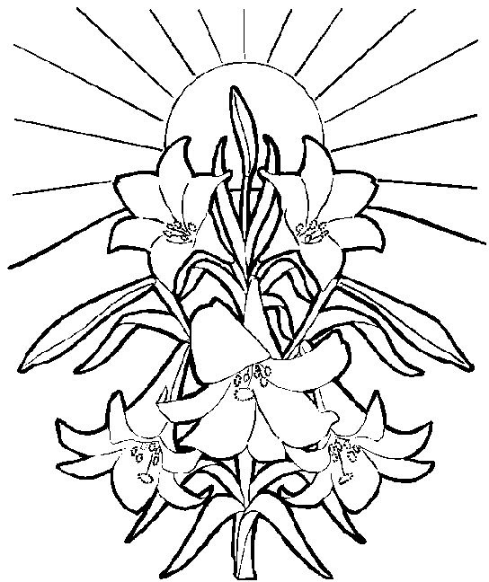 Free Free Easter Lily Clipart Download Free Clip Art Free Clip Art