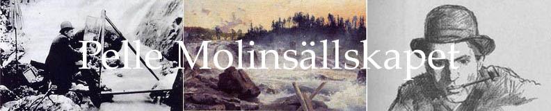 Pelle Molin 1864 - 1896