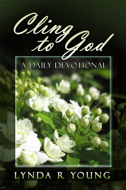 Celebrate the Small Things — Today's the Day! And Lynda R. Young's New Devotional: Cling To God!