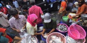 Kenaikan harga ikan.