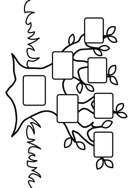 Dibujo Para Colorear árbol Genealógico Vacío Img 26875