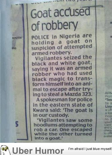 Shit Just Goat Real In Nigeria Funny Pictures Quotes Pics