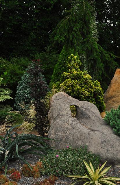 Rock Garden 3