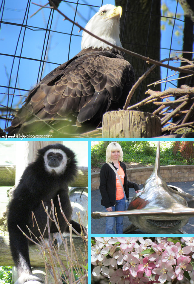 Columbus Zoo 5