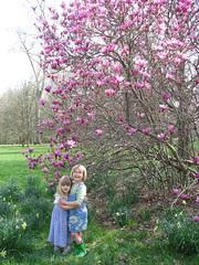 Girls under magnolia