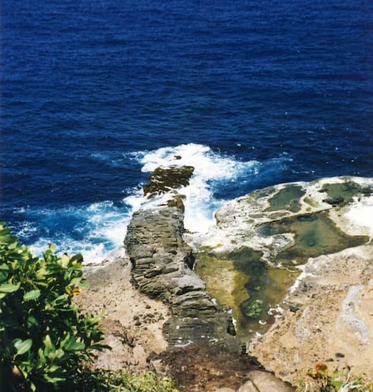 Escalier tete chien, Dominica | Sophie's World Travel Inspiration
