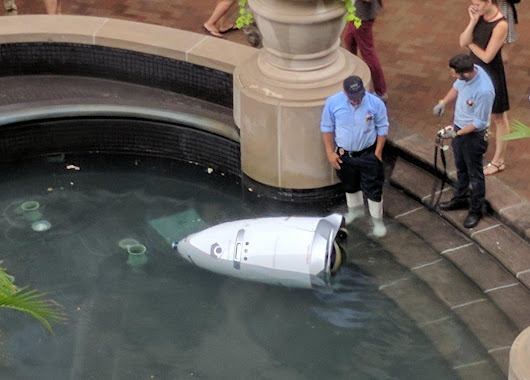 Suicidal robot security guard drowns itself by driving into pond