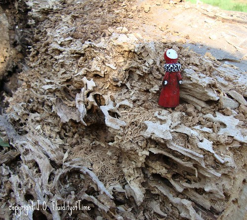 Poppet in lacy wood 1