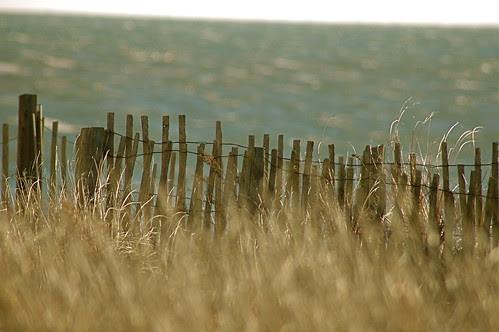 Winter on the Cape~