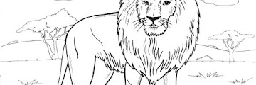 Free Printable Coloring Pages Lion