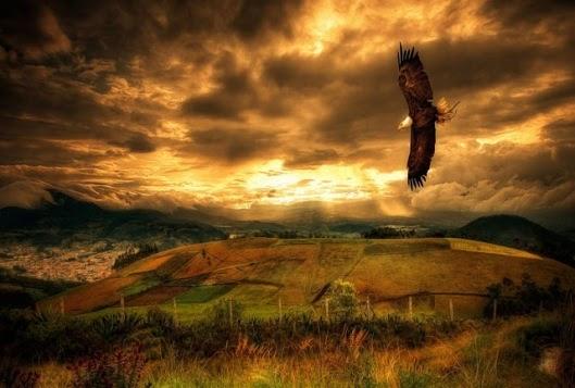 Άγιος Νικόλαος Βελιμίροβιτς: Περί του πτώματος και των αετών