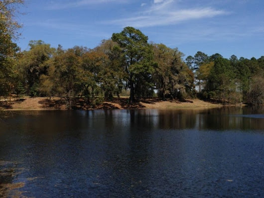 Featured Ranch: Blackwater Ranch - 2,134 Acres with River Frontage in Georgia - LANDFLIP Blog