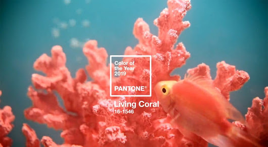Pantone Announces Color of the Year: Living Coral | Webdesigner Depot