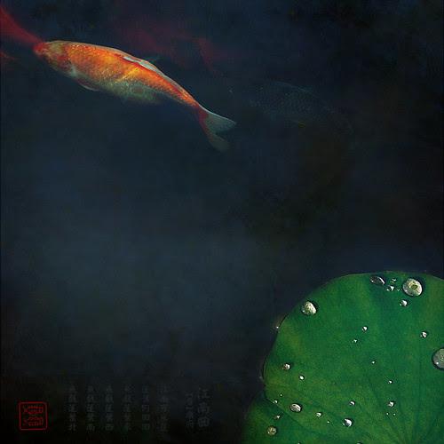 鱼。莲 por Elaine Won
