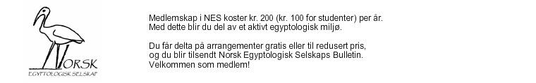 http://norskegyptologiskselskap.weebly.com/uploads/6/1/8/9/6189593/header_images/1389871996.jpg