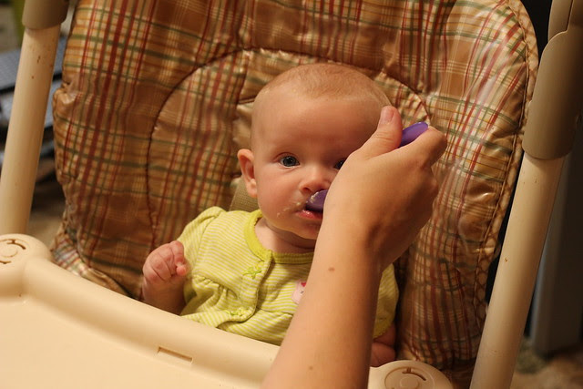 Josie's First Solid Food