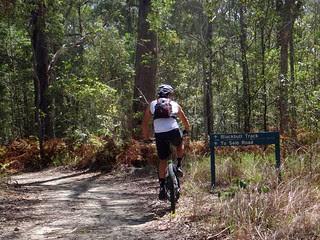 Eumundi Forest Trails
