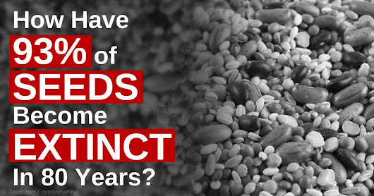 "Dr. Joseph Mercola on Twitter: ""Not only animals go #extinct. We've lost 93% of seed varieties in the last 80 years.  """