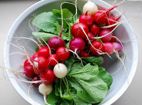 radish harvest