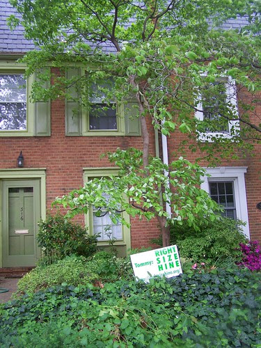 Right size Hine yard sign, 300 block, 8th St. SE