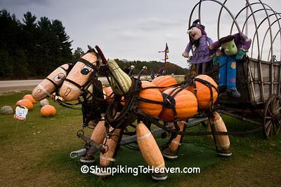 Pumpkin and Squash Horse Team, Peck's Farm Market, Sauk County, Wisconsin