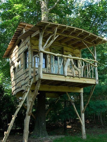 diy tree house plans  dreamers   build
