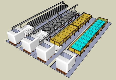 Commercial Aquaponics System Plans