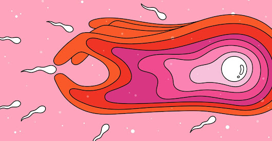 Females' Eggs May Actively Select Certain Sperm - The Atlantic