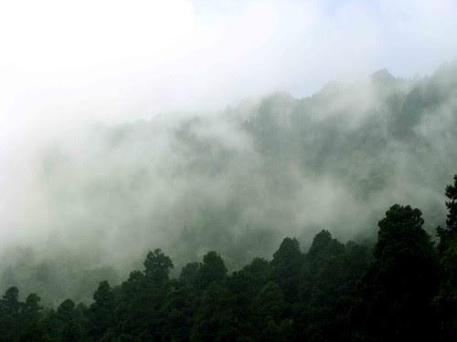 Nainital Behind the Mist