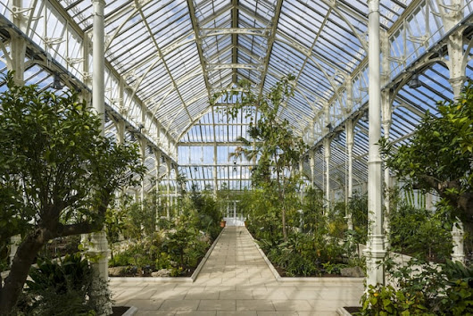The World's Largest Victorian Glasshouse Reopens in London's Kew Gardens