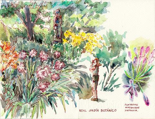 Terraza de las Escuelas Botánicas by aidibus