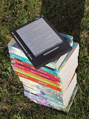 IRex iLiad ebook reader outdoors in sunlight. ...