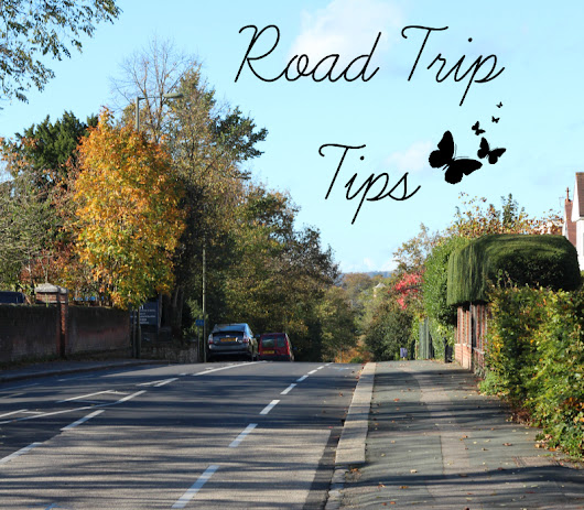 8 Road Trip Tips | Real Posh Mom