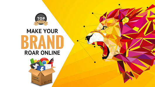 Make Your Social Media Roar Online With Complete Marketing for $350