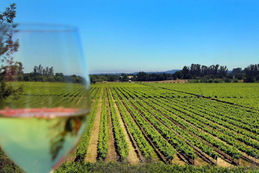 Why you need to visit charming Sonoma wine country