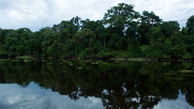 medio ambiente, riesgo medio ambiental