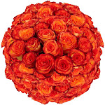 150 High & Magic Roses Long Wholesale by GlobalRose