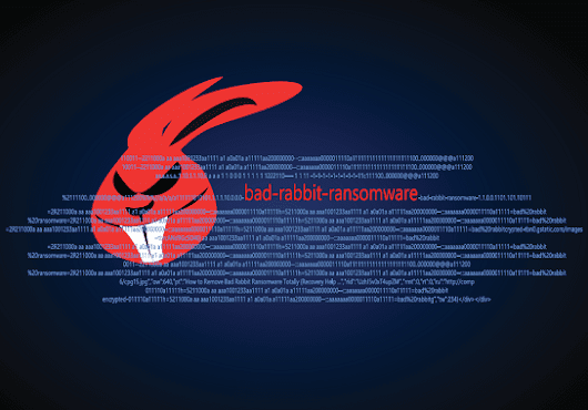 The Bad Rabbit Ransomware Invasion: A Review