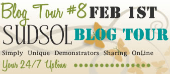SUDSOL Blog Tour, February 1st!