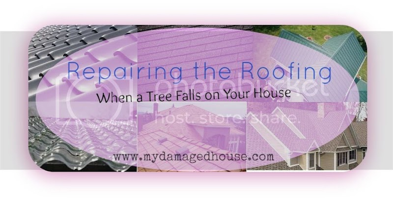 Repairing the Roofing When a Tree Falls on Your House