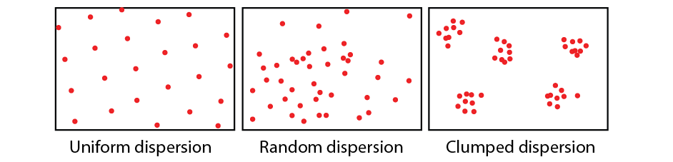 25 Age Structure Diagram Definition Biology