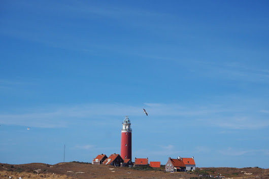 Dunes, forest and wide beaches: a trip to Texel