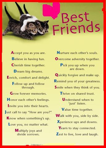 Best Friends Word Meaning Friends Myniceprofilecom