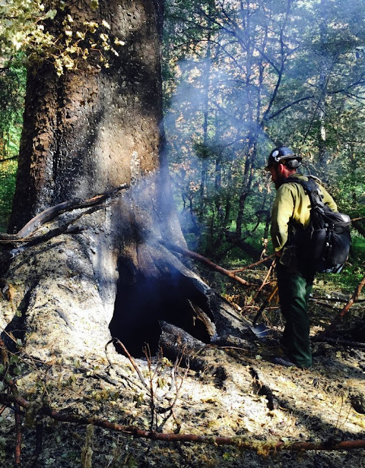 Burning rain forest raises concern about future...