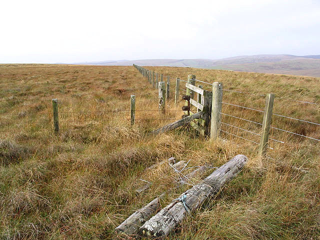 File:Fences on Bloch Hill - geograph.org.uk - 603779.jpg