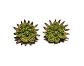 Tiny stud earrings crochet leather olive green flower - myRainbowWorld