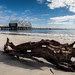 Busselton Jetty with Driftwood