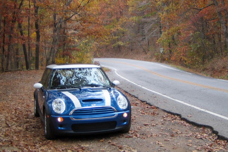 BityBlu on the Pig Trail