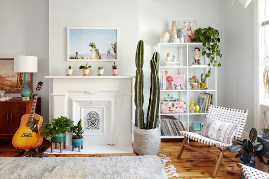 10 Style-Boosting Design Ideas for Your Houseplant Collection